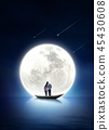 Full moon in the night 007 45430608