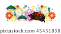 新年的卡片材料 45431838