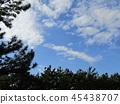 푸른 하늘, 파란 하늘, 청색 45438707