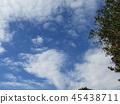 푸른 하늘, 파란 하늘, 청색 45438711