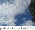 푸른 하늘, 파란 하늘, 청색 45438712