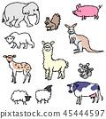 動物 45444597
