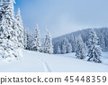 Winter landscape with footpath in the snow 45448359