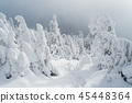 Winter landscape with footpath on snow 45448364