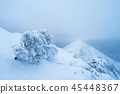 Winter landscape with fog on a mountain ridge 45448367