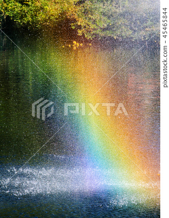 彩虹 45465844