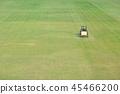秋季草坪管理 45466200