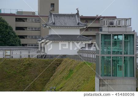 Utsunomiya Castle Ruins Park 45480036