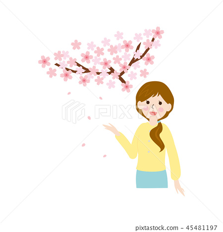 Person material-cherry blossom and woman 45481197