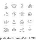spring vetor line icons 45481299