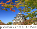 Hikone castle 45481540