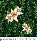 Liana spreads green leaves creeper and lily flower seamless pattern background 45486145