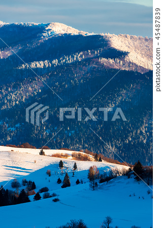 winter scenery in mountains 45487839