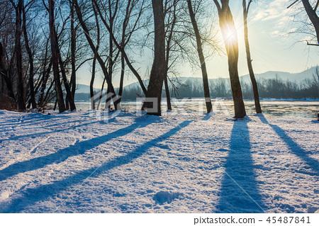winter scenery near the river 45487841