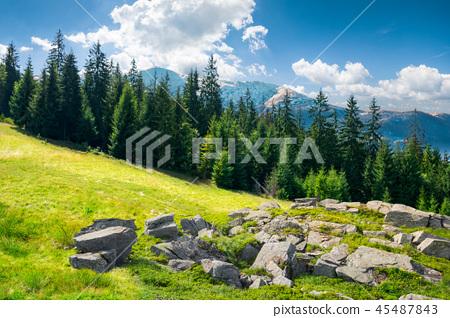 alpine summer landscape composite 45487843