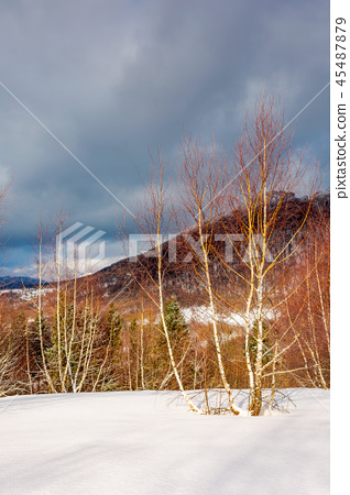 dramatic winter scenery in mountains 45487879