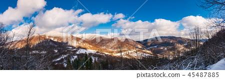winter panorama of Uzhanian National Nature Park 45487885