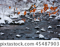 twig above the forest stream in winter 45487903