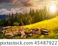 alpine summer landscape composite at sunset 45487922