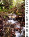 stream, waterfall, flow 45503404