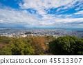 Tokushima city, Tokushima cityscape Taken from the autumn Emeishan Park 45513307
