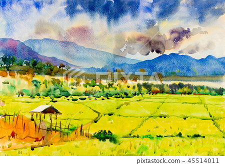 Watercolor painting of cottage and rice field. 45514011