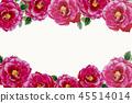 花朵 花 花卉 45514014