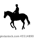 animal horse silhouette 45514890