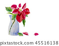 Christmas star in a vase. 45516138