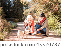 Delighted nice elderly couple feeding the dog 45520787