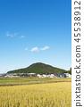 agricultural, village, farm 45538912
