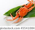 해산물 게 세이코카니 세코카니 콧뻬카니 45541084