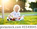 soccer, football, ball 45549045