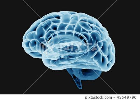 Brain scan illustration isolated on dark BG 45549790