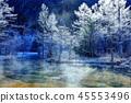 发誓对雾冰的Tashiro池塘的早晨 45553496