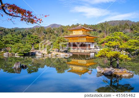 kinkakuji at Rokuonji, Golden Pavilion in kyoto 45565462