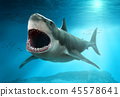 3d, mouth, shark 45578641
