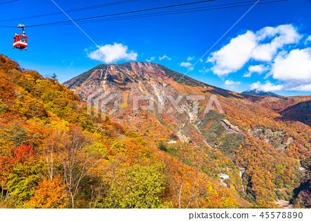 """""""枥木县""""秋天的阳光,红叶和Akechidaira索道 45578890"""