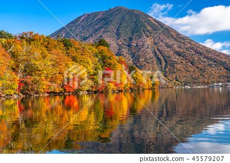 """""""栃木縣""""秋天的陽光,Mancho山和Haccho dejima的秋葉""""從中禪寺湖"""" 45579207"""