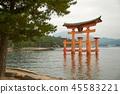 Tori gate at sea on Miyajima, Hiroshima 45583221