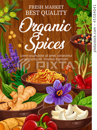 Organic seasonings and spices, vector 45584041
