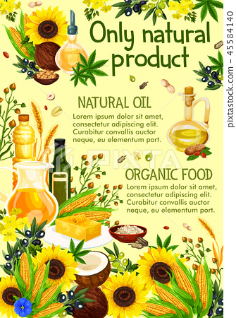 Plants and herbs, olive oil, vector 45584140