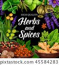 herb, spice, seasoning 45584283