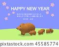 Wildlife cards 3 45585774