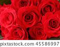 빨간 장미 꽃다발 45586997