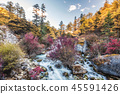 Colorful waterfall in autumn forest 45591426