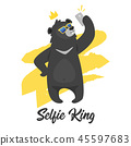 动物 熊 有趣 45597683