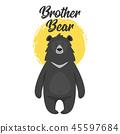 动物 熊 矢量 45597684