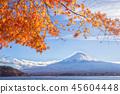 Mt Fuji  the early morning 45604448