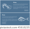 shrimp bream marine 45610235
